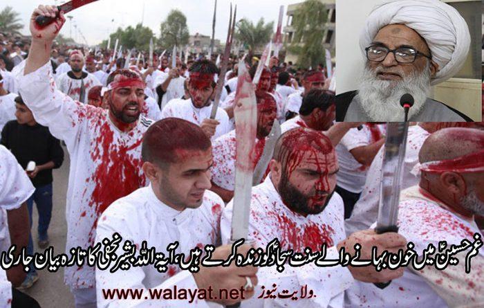 غم حسین ؑ میں خون بہانے کی تائید میں آیۃ اللہ بشیر نجفی کا تزہ بیان جاری