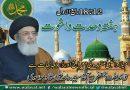 میلا د مصطفیؐ کا تقاضاہے کہ مسلمانان عالم متحد ہو جائیں، مسلم حکمران استعمار کی دست نگری چھوڑ دیں، آغا حامد موسوی