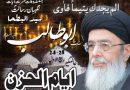 او آئی سی نے شلغم سے مٹی جھاڑی ،اسرائیل کا مقاطعہ کیا جائے ،یوم الحزن پر قائد ملت جعفریہ آقائے موسوی کا پیغام