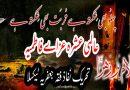 تحریک نفاذفقہ جعفریہ کا ''عالمی عشرہ عزائے فاطمیہؑ '' منانے کا اعلان؛حکومت ڈیرہ اسمعیل خان میں جاری خونی کھیل کو روکے
