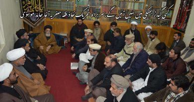 قائد ملت جعفریہ آ غا حامد موسوی ٹی این ایف جے عزاداری سیل سے خطاب کررہے ہیں ۔