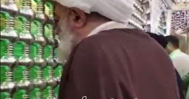 روضہ علیؑ عذاب سے بچاؤ کا قلعہ ہے ؛ آیۃ اللہ شیخ محمد سند کی روضہ مولا علی ؑ پر حاضری