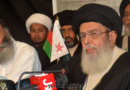 صدر وزیراعظم اجلاسوں میں مکتب تشیع کو کھڈے لائن لگانے کی کوشش کی گئی ؛اپنے  حقوق اور شعائر پر کوئی سمجھوتہ نہیں کریں گے، آغا حامد موسوی