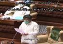 سندھ اسمبلی کی قرارداد امت مسلمہ کے دل کی آواز ہے متحدہ علماء بورڈ غیر نمائندہ اور غیر آئینی ہے، قائد ملت جعفریہ آغا حامد موسوی