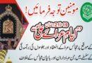 یوم شہادت علی ؑ پر ثابت قدم عزاداروں کی معاونت کیلئے تحریک نفاذ فقہ جعفریہ کی مرکزی کمیٹی تشکیل دے دی گئی