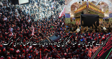 کربلائے معلی میں آیۃ اللہ سعید الحکیم کی تشیع جنازہ و نیابتی زیارت ، لاکھوں افراد کی شرکت؛ میت نجف اشرف روانہ